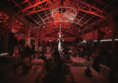 Bohrerhof Show 2017 • Premiere